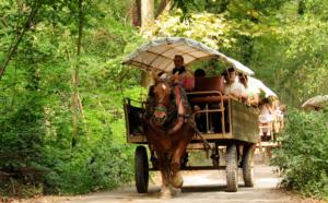 paart-en-wagen